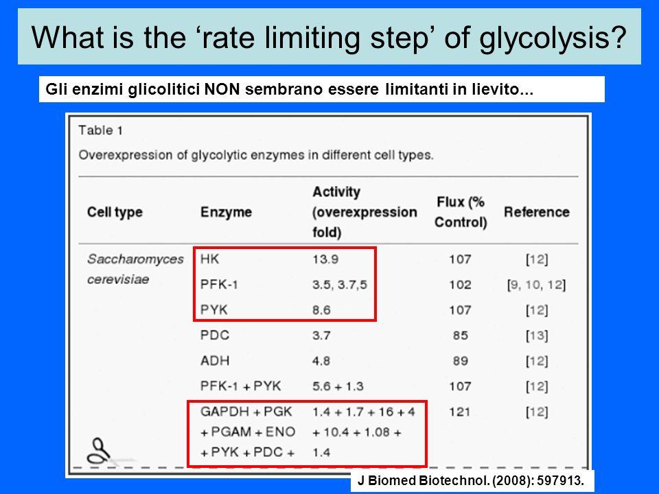 What is the rate limiting step of glycolysis? Gli enzimi glicolitici NON sembrano essere limitanti in lievito... J Biomed Biotechnol. (2008): 597913.