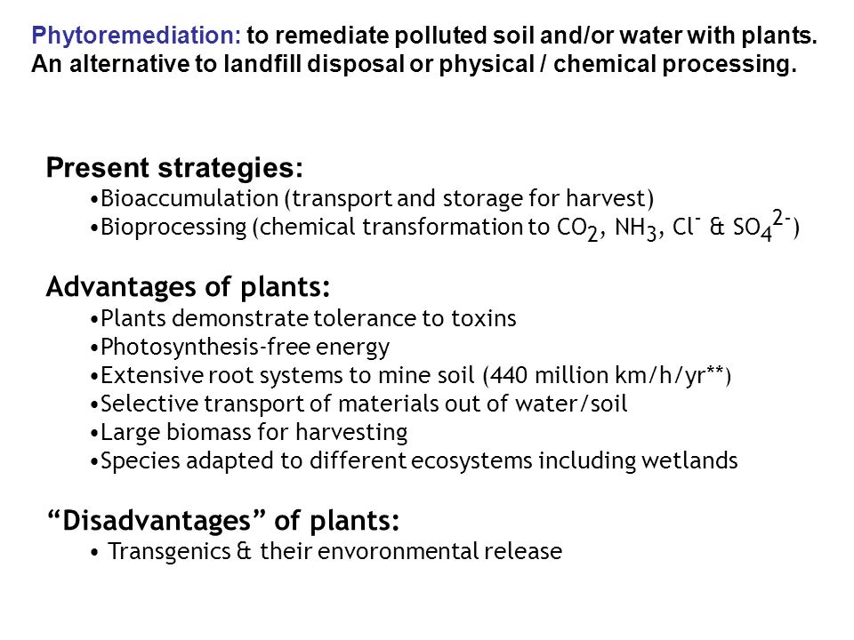 Breakdown of contaminants taken up by plants through metabolic processes within or external to plant through effect of compound produced by plants Oxidoreductases, dehalogenases, nitroreductases, peroxidases, nitrilases & laccases may involved Phytodegradation/Phytotransformation