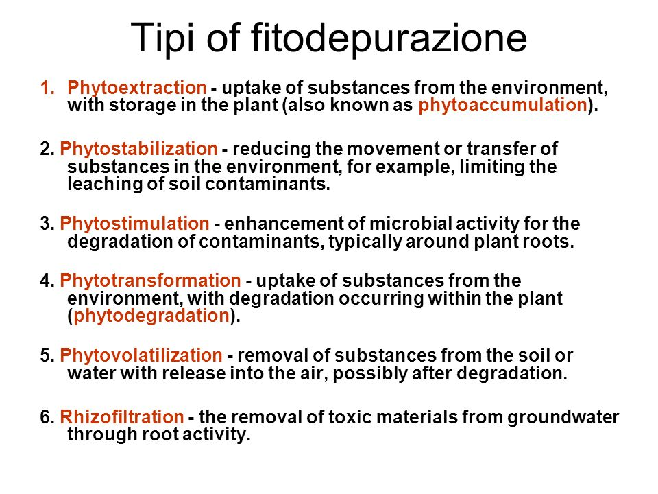 Tipi of fitodepurazione 1.Phytoextraction - uptake of substances from the environment, with storage in the plant (also known as phytoaccumulation). 2.