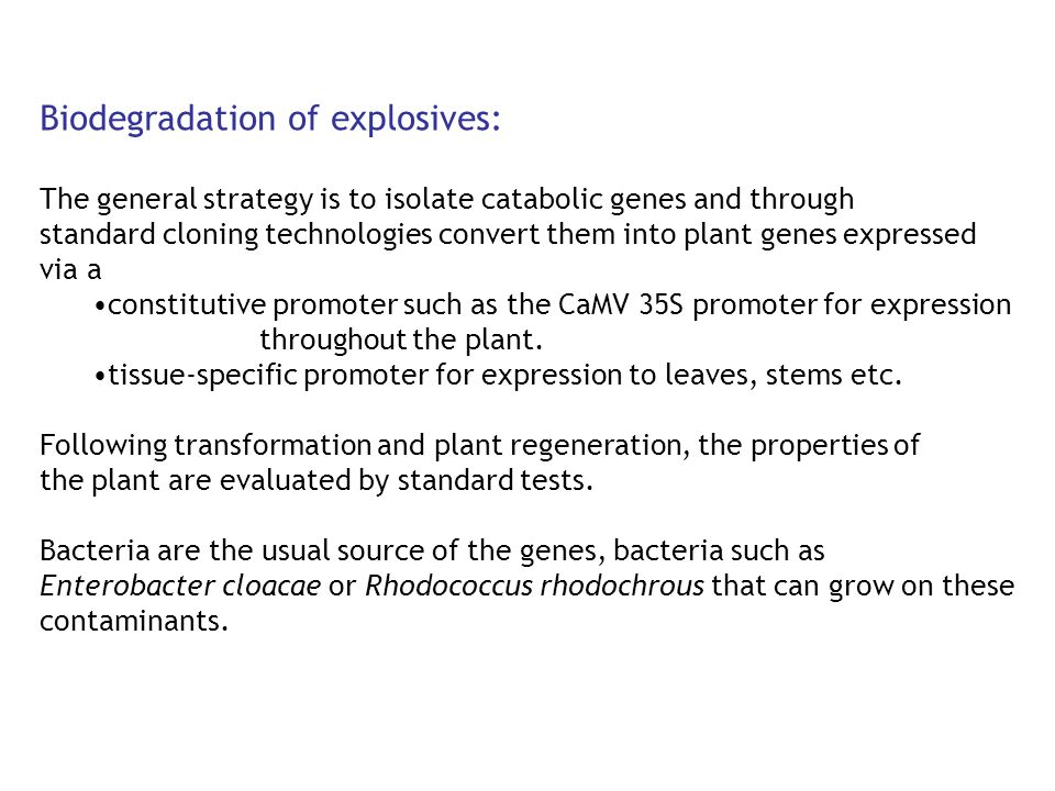 Biodegradation of explosives: The general strategy is to isolate catabolic genes and through standard cloning technologies convert them into plant gen