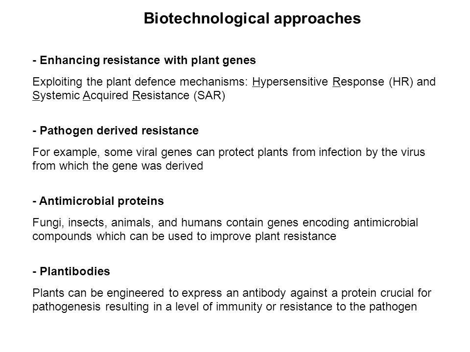 - Enhancing resistance with plant genes Exploiting the plant defence mechanisms: Hypersensitive Response (HR) and Systemic Acquired Resistance (SAR) -