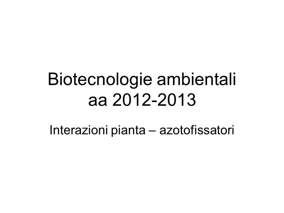Interazioni pianta – azotofissatori Biotecnologie ambientali aa 2012-2013