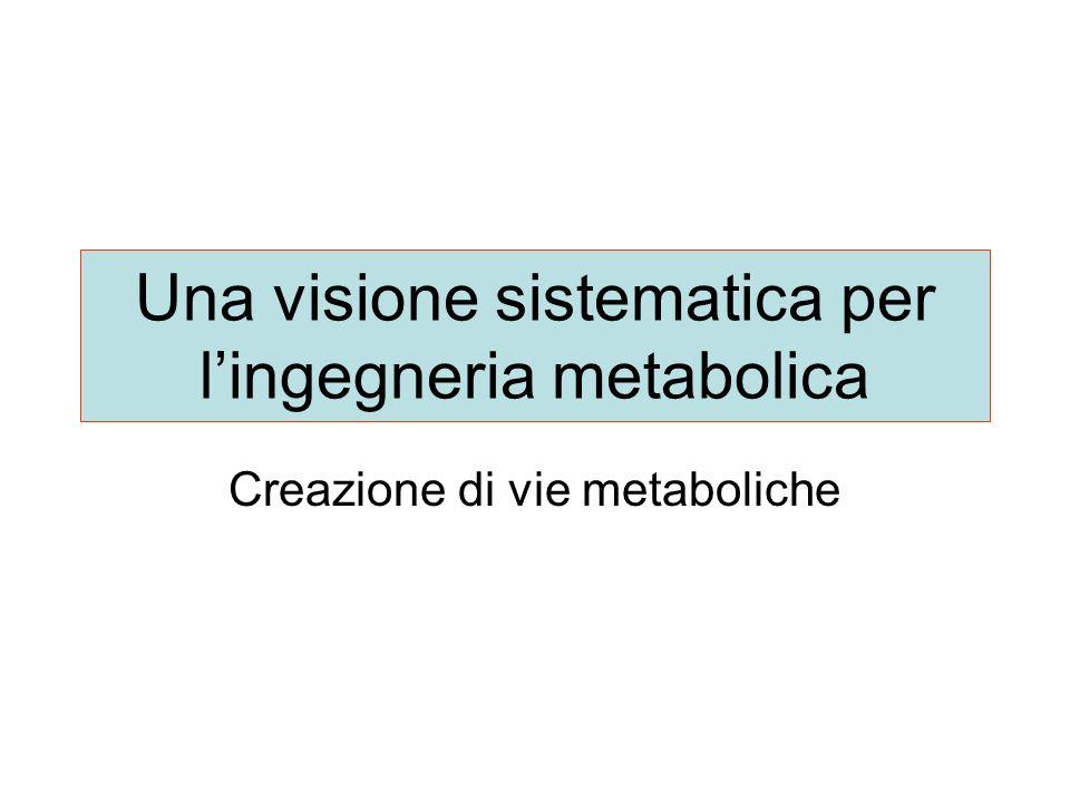 Una visione sistematica per lingegneria metabolica Creazione di vie metaboliche