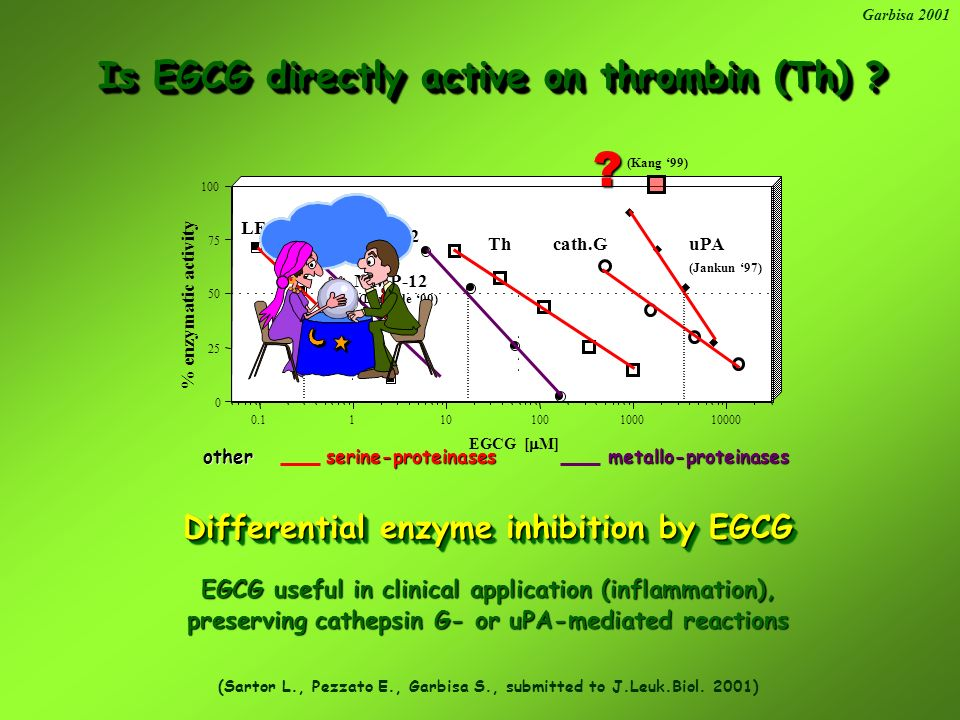 prevents pulmonary thrombosis prevents Is EGCG active on thrombin (Th) .
