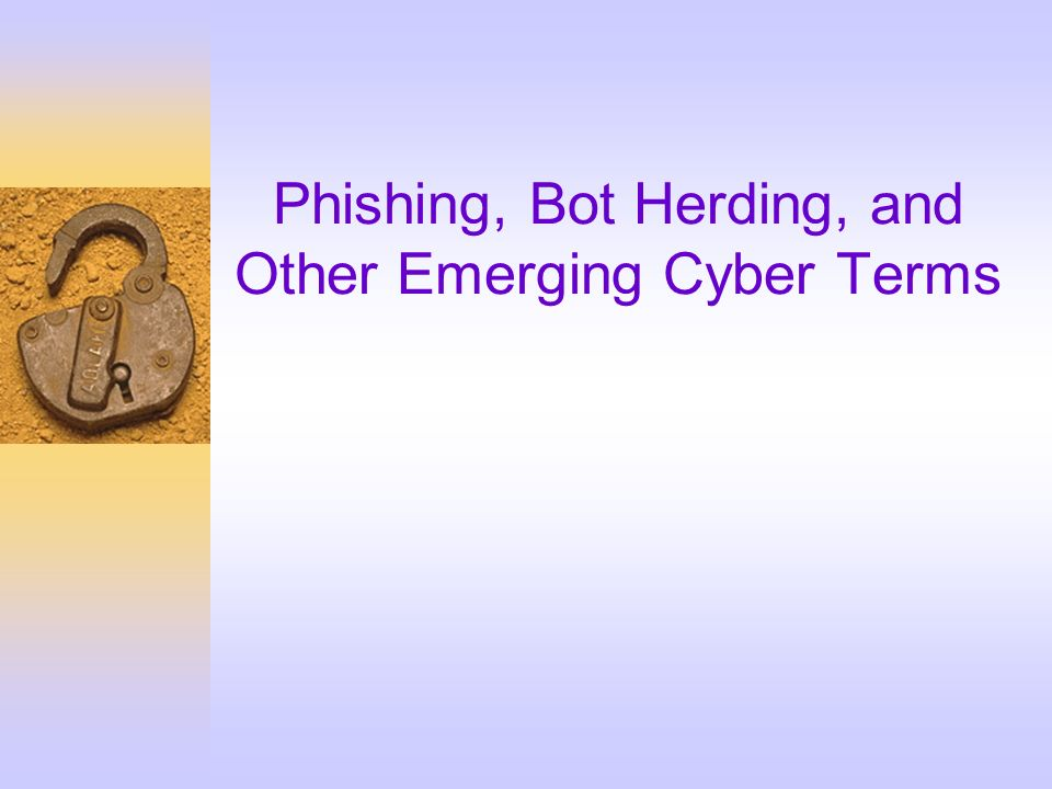 Phishing, Bot Herding, and Other Emerging Cyber Terms