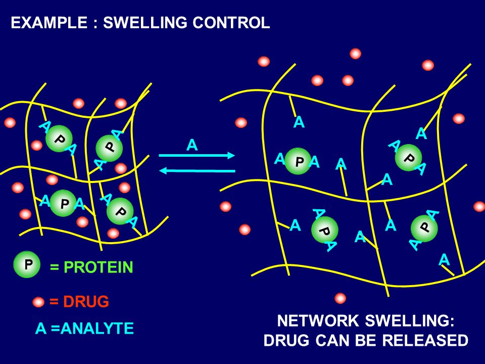 A P A A P A A P A A P A A A A A A A A A A NETWORK SWELLING: DRUG CAN BE RELEASED EXAMPLE : SWELLING CONTROL P A A P A A P A A P A A = DRUG A =ANALYTE