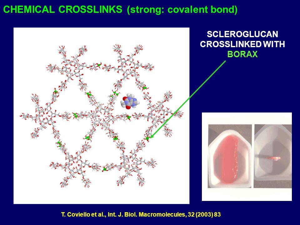 CHEMICAL CROSSLINKS (strong: covalent bond) SCLEROGLUCAN CROSSLINKED WITH BORAX T. Coviello et al., Int. J. Biol. Macromolecules, 32 (2003) 83