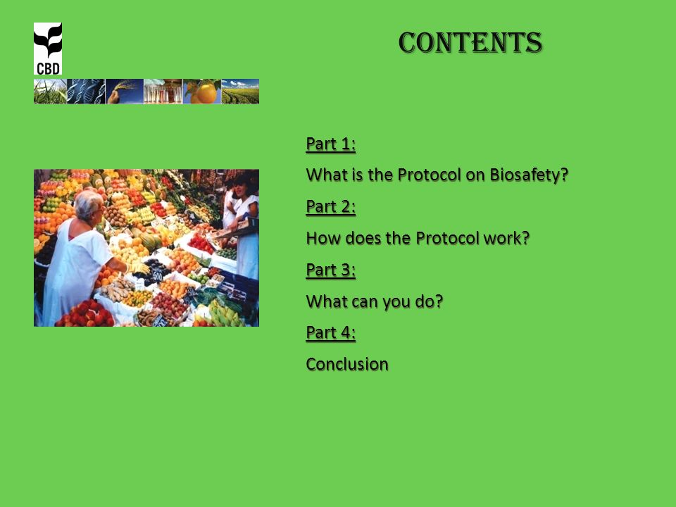 Contents Part 1: What is the Protocol on Biosafety? Part 2: How does the Protocol work? Part 3: What can you do? Part 4: Conclusion