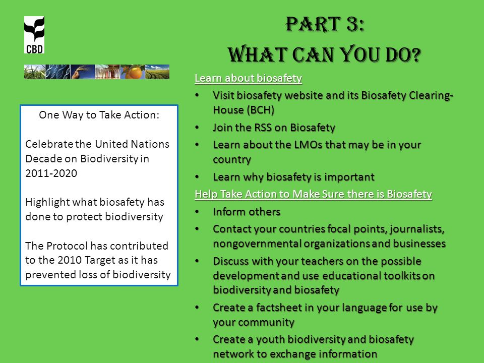 PART 3: What can you do? Learn about biosafety Visit biosafety website and its Biosafety Clearing- House (BCH) Visit biosafety website and its Biosafe