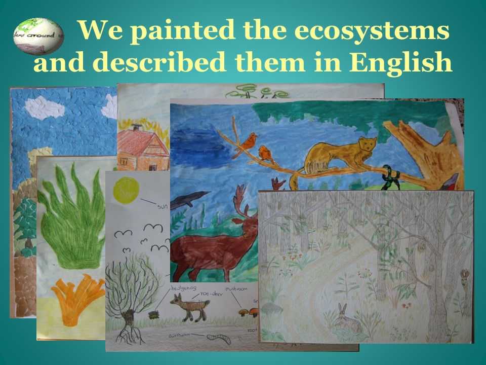 We painted the ecosystems and described them in English