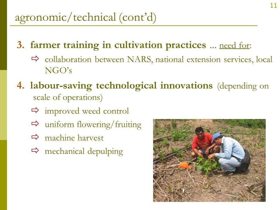 11 agronomic/technical (contd) 3. farmer training in cultivation practices... need for: collaboration between NARS, national extension services, local
