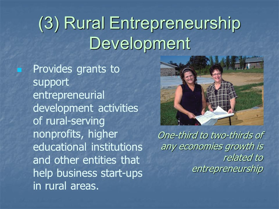 (3) Rural Entrepreneurship Development Provides grants to support entrepreneurial development activities of rural-serving nonprofits, higher education