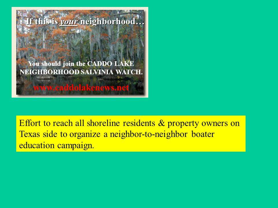 If this is your neighborhood… You should join the CADDO LAKE NEIGHBORHOOD SALVINIA WATCH.