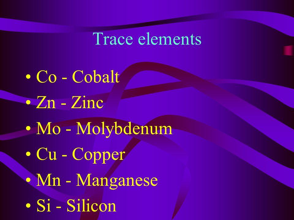 Also - K- potassium Ca - Calcium Fe - Iron Na - Sodium