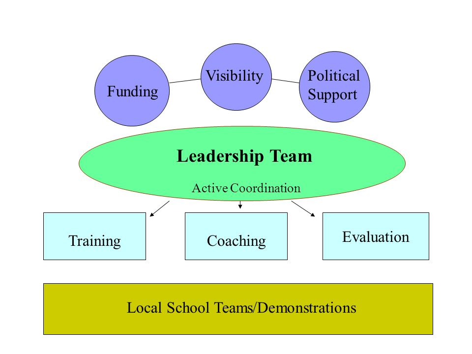 Leadership Team Funding VisibilityPolitical Support TrainingCoaching Evaluation Active Coordination Local School Teams/Demonstrations