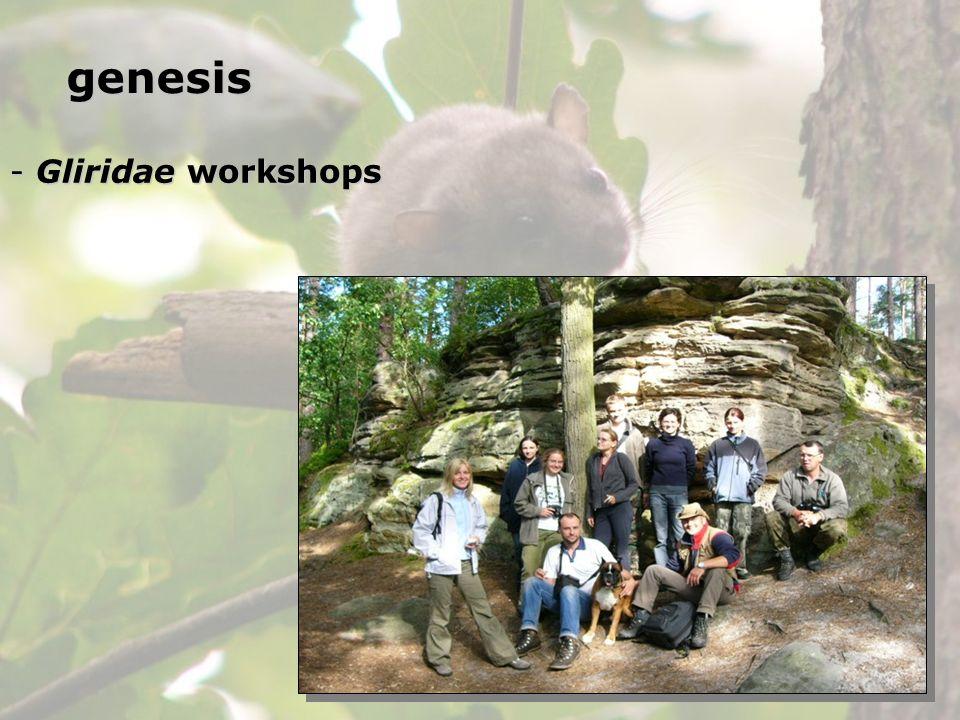 - Gliridae workshops genesis
