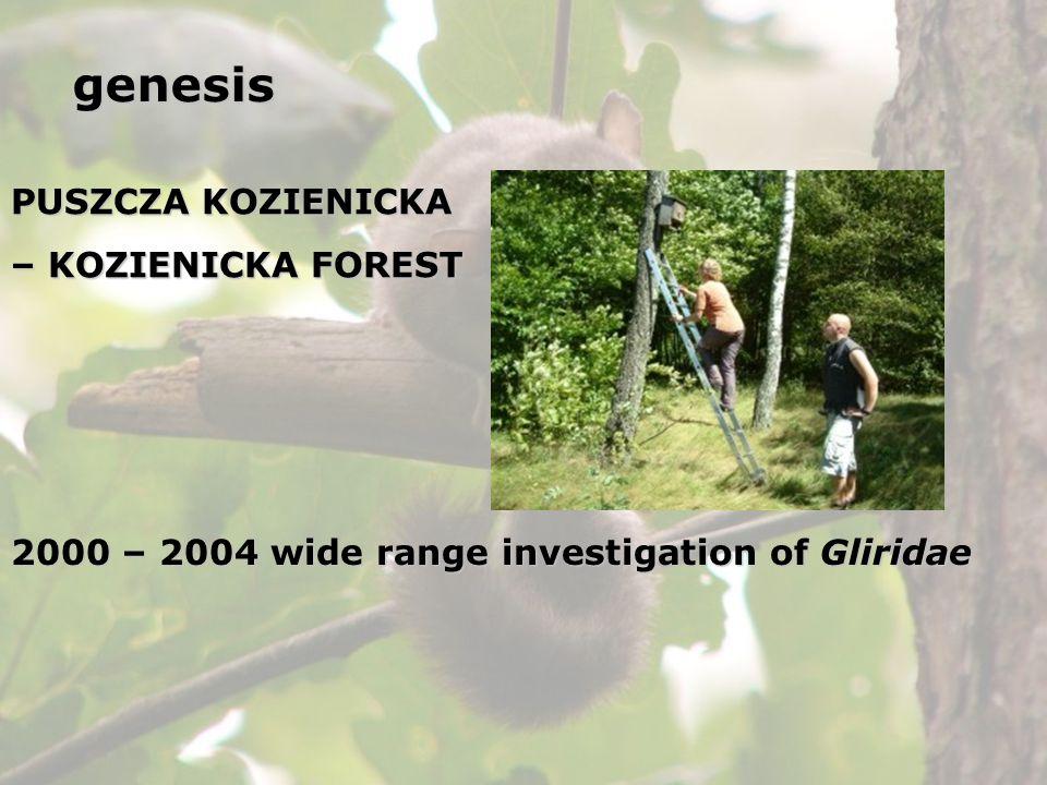 PUSZCZA KOZIENICKA – KOZIENICKA FOREST 2000 – 2004 wide range investigation of Gliridae genesis