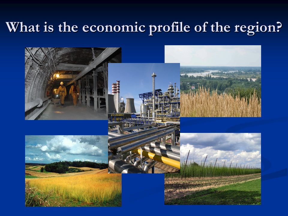 What is the economic profile of the region?