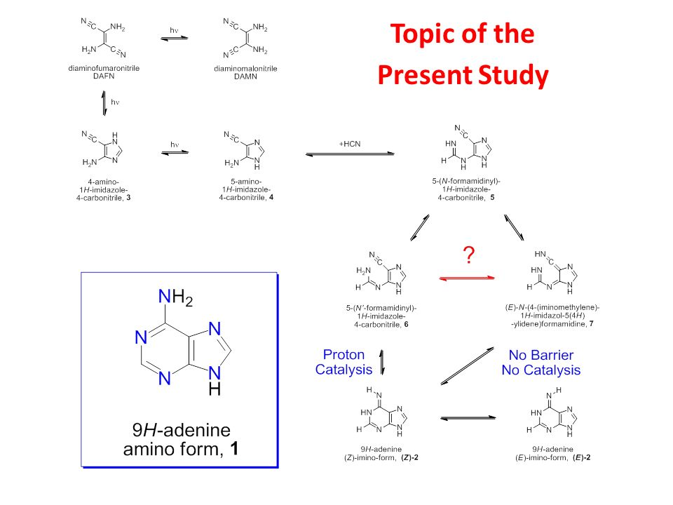 Topic of the Present Study