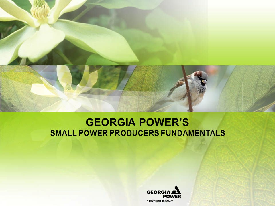 GEORGIA POWERS SMALL POWER PRODUCERS FUNDAMENTALS Notice of Intent Proxy pricing In years where GPC has capacity need suppliers 30MW or less must provide Notice of Intent (NOI) to receive proxy pricing Required (NOI) information Location of facility Expected output Fuel & Technology type Designation as co-generation or a renewable Operational characteristics (dispatch ability, capacity factor) Energy Price Documentation showing that the supplier adheres to FASB rule 46 as it relates to Variable Interest Entities Documentation necessary for company to make capital lease determination