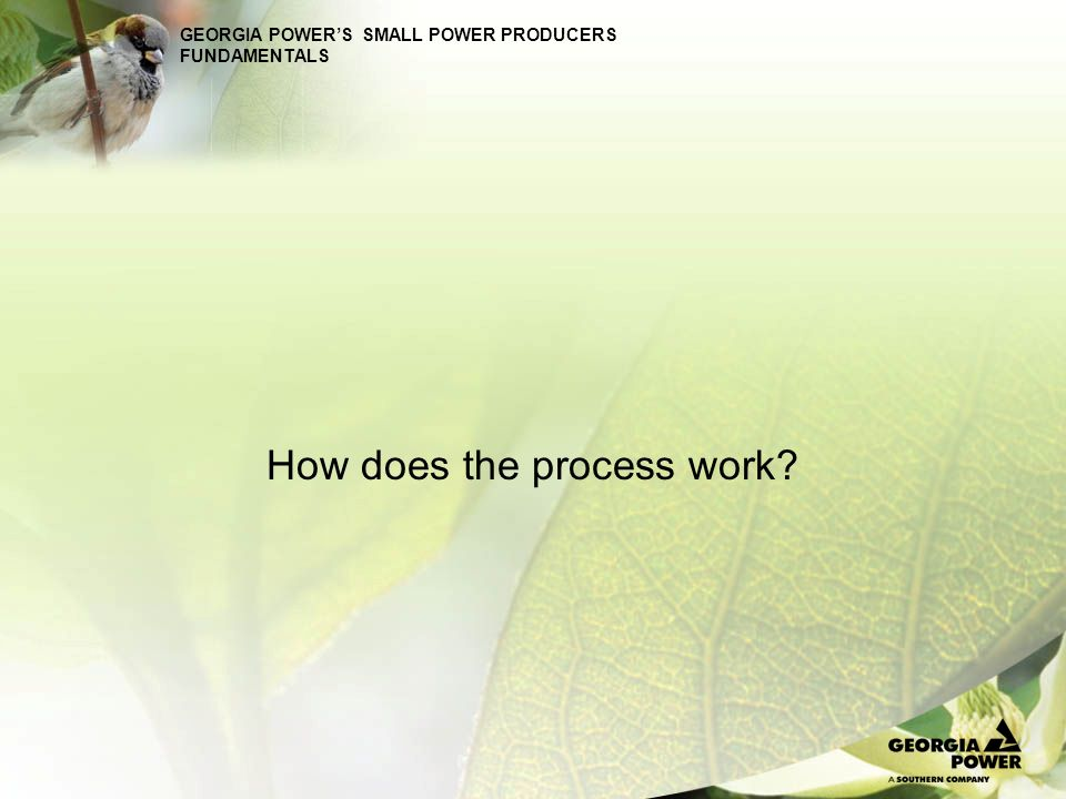 GEORGIA POWERS SMALL POWER PRODUCERS FUNDAMENTALS How does the process work?
