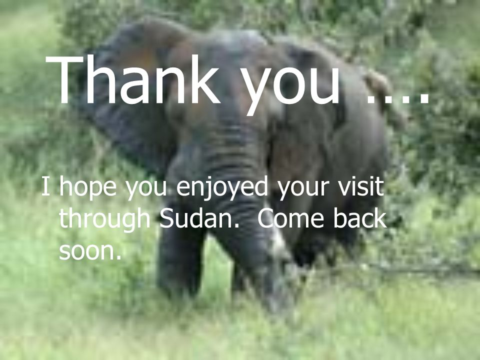 Thank you …. I hope you enjoyed your visit through Sudan. Come back soon.
