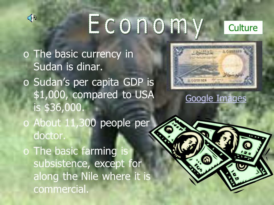 oThe basic currency in Sudan is dinar. oSudans per capita GDP is $1,000, compared to USA is $36,000. oAbout 11,300 people per doctor. oThe basic farmi
