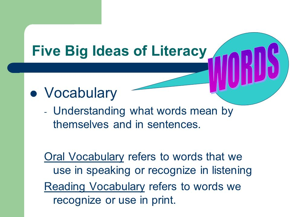 Five Big Ideas of Literacy Vocabulary - Understanding what words mean by themselves and in sentences. Oral Vocabulary refers to words that we use in s
