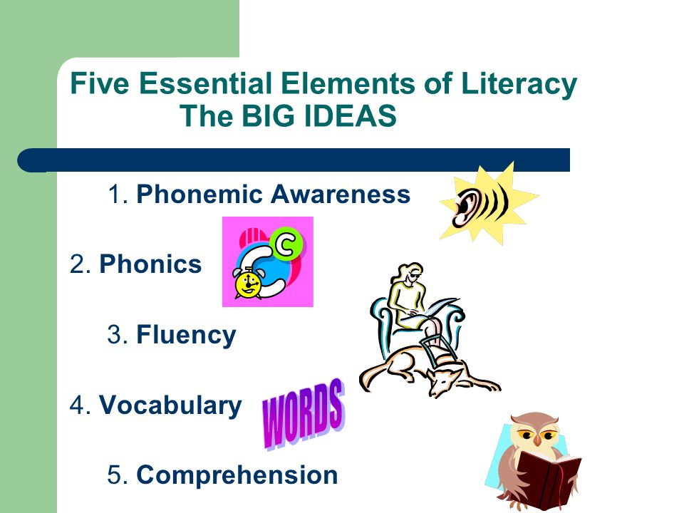Five Essential Elements of Literacy The BIG IDEAS 1. Phonemic Awareness 2. Phonics 3. Fluency 4. Vocabulary 5. Comprehension