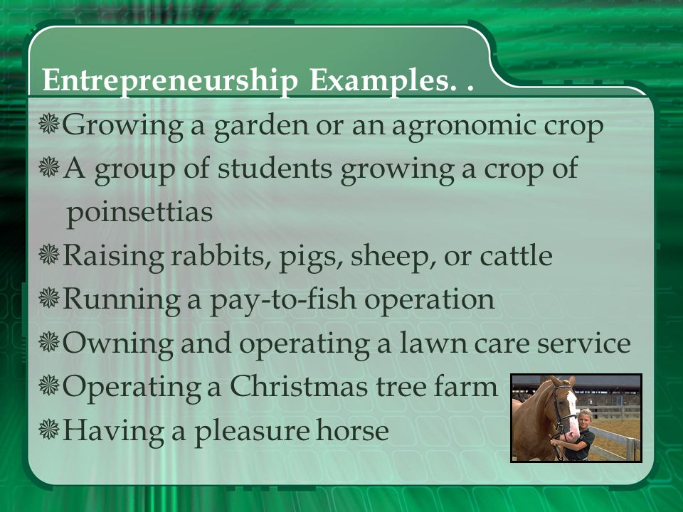 Entrepreneurship SAE The student plans, implements, operates, and assumes financial risks in a farming activity or agricultural business for an entrep