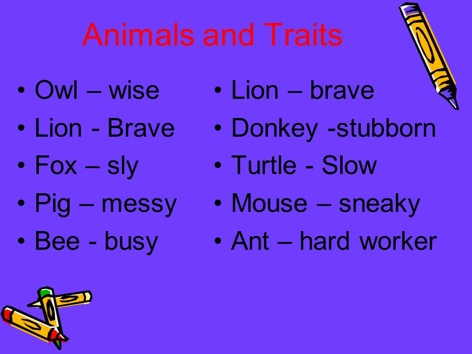 Animals and Traits Owl – wise Lion - Brave Fox – sly Pig – messy Bee - busy Lion – brave Donkey -stubborn Turtle - Slow Mouse – sneaky Ant – hard work