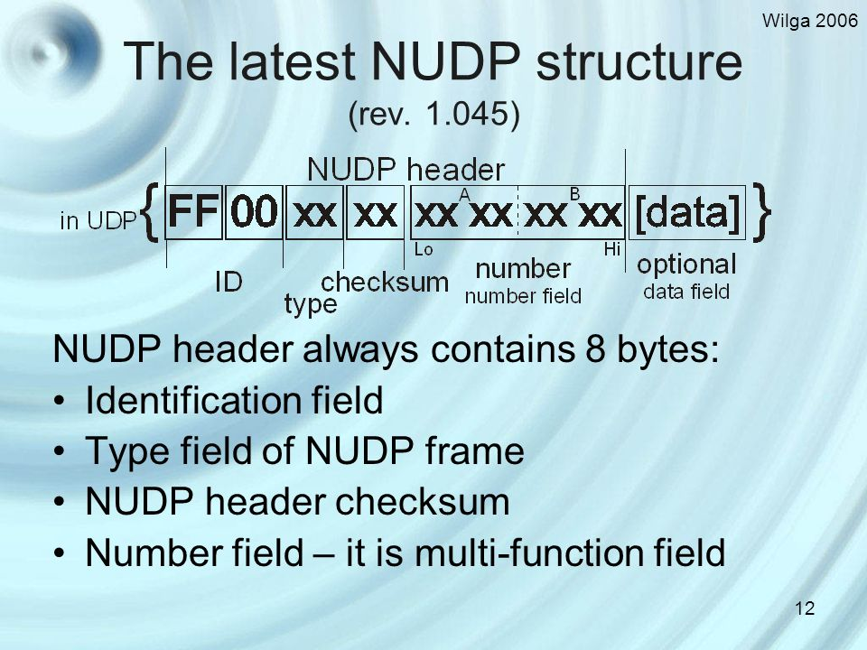 Wilga 2006 12 The latest NUDP structure (rev.