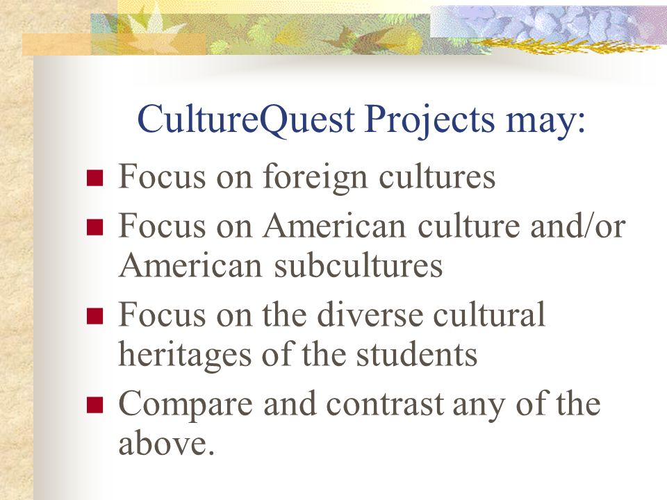 literature art music history government religion language everyday life customs & traditions Values, beliefs and behavior WHAT APECTS OF CULTURE ARE EXAMINED?