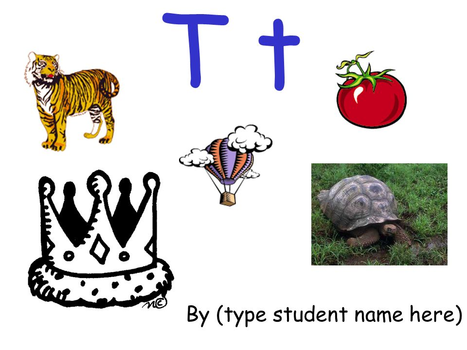 T t By (type student name here)