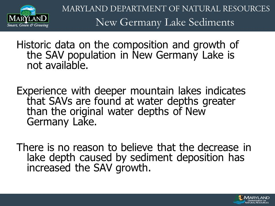 New Germany Lake Sediments Historic data on the composition and growth of the SAV population in New Germany Lake is not available. Experience with dee