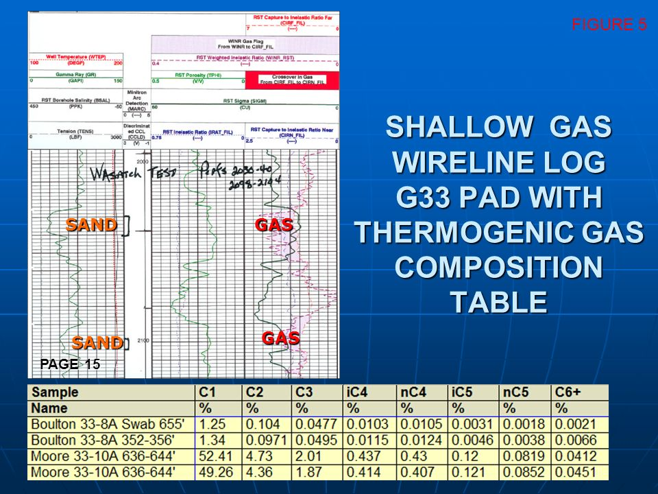 SHALLOW GAS WIRELINE LOG G33 PAD WITH THERMOGENIC GAS COMPOSITION TABLE SANDGAS GAS SAND FIGURE 5 PAGE 15