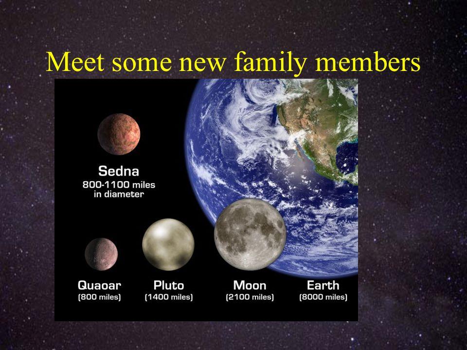 Meet some new family members