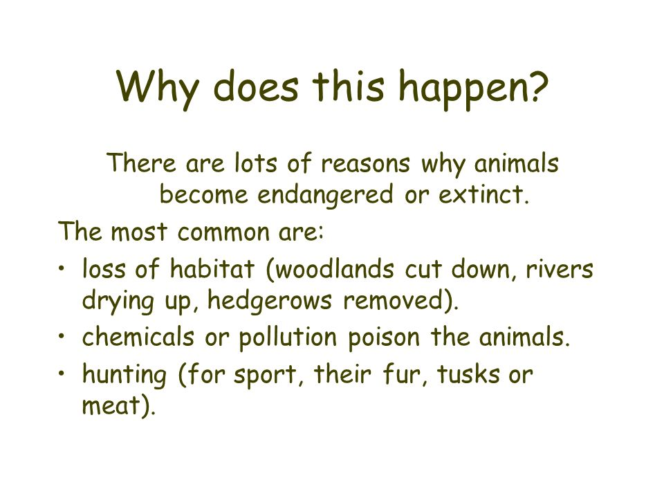 Why does this happen? There are lots of reasons why animals become endangered or extinct. The most common are: loss of habitat (woodlands cut down, ri