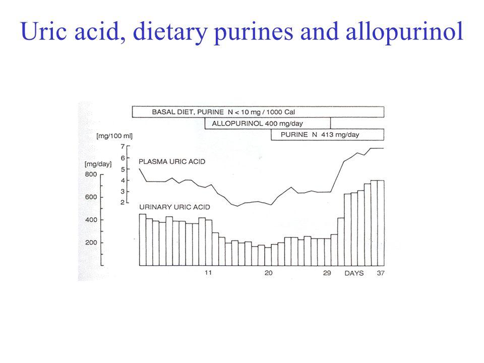 Uric acid, dietary purines and allopurinol