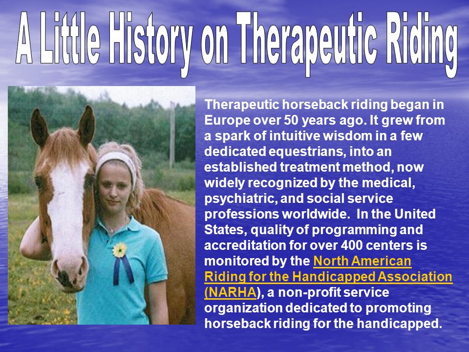 Therapeutic horseback riding began in Europe over 50 years ago. It grew from a spark of intuitive wisdom in a few dedicated equestrians, into an estab