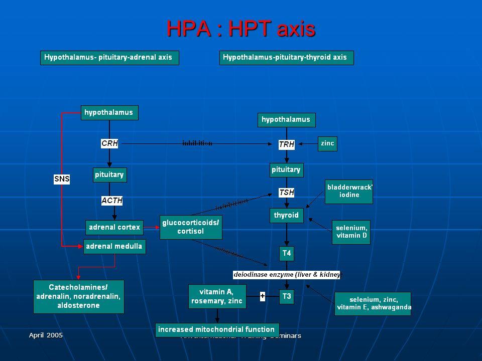 April 2005 Ark International Training Seminars HPA : HPT axis