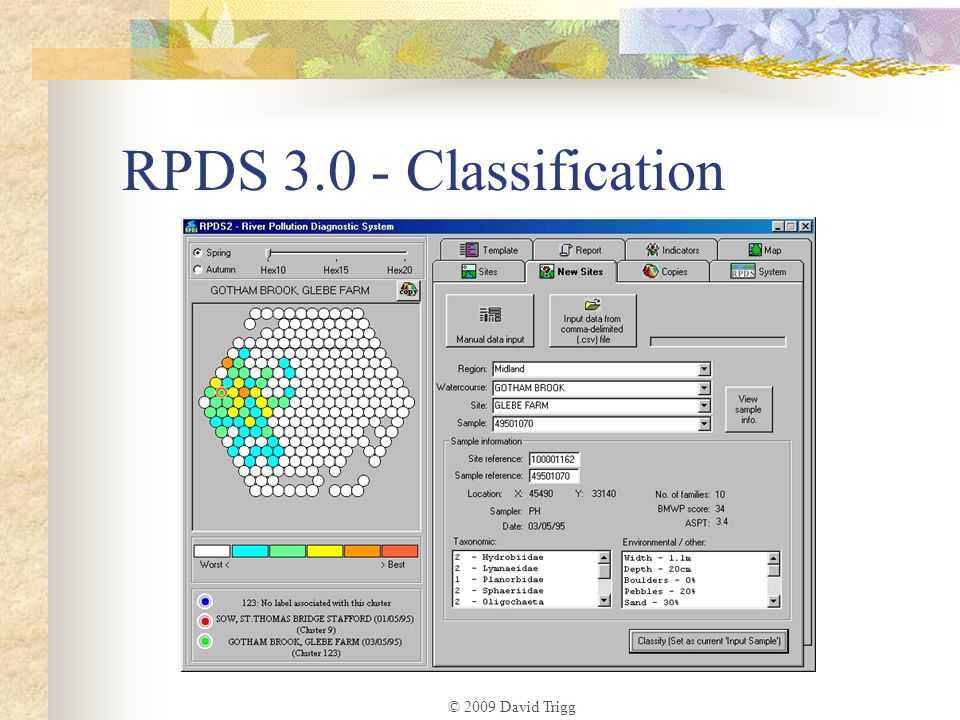 © 2009 David Trigg RPDS 3.0 - Classification