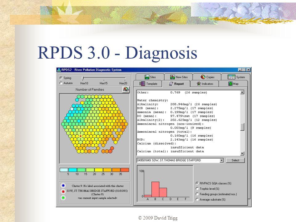 © 2009 David Trigg RPDS 3.0 - Diagnosis