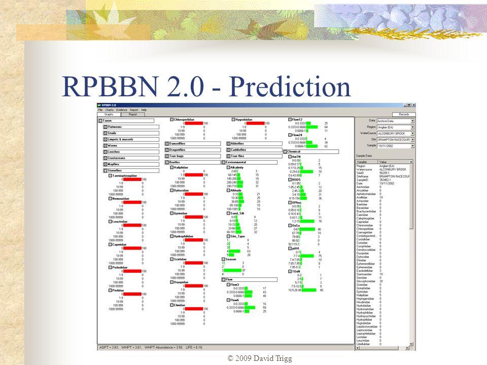 © 2009 David Trigg RPBBN 2.0 - Prediction