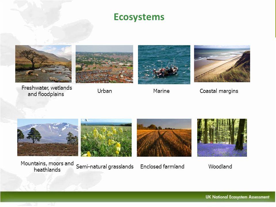 Ecosystems Mountains, moors and heathlands Semi-natural grasslandsEnclosed farmlandWoodland Freshwater, wetlands and floodplains UrbanMarineCoastal ma