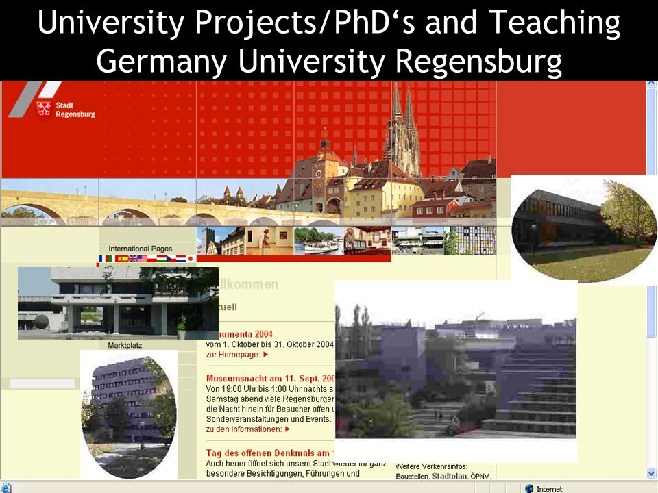 Oberösterreich 30 What we and our PhD-students will do in the future in cooperation with e.g. …