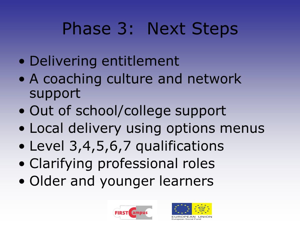 Phase 3: Next Steps Delivering entitlement A coaching culture and network support Out of school/college support Local delivery using options menus Lev