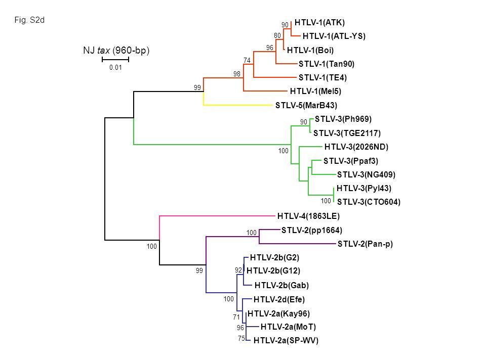 HTLV-1(ATK) HTLV-1(Boi) HTLV-1(ATL-YS) HTLV-1(Mel5) STLV-5(MarB43) STLV-1(Tan90) STLV-1(TE4) HTLV-3(Pyl43) HTLV-3(2026ND) STLV-3(NG409) STLV-3(Ph969) STLV-3(CTO604) STLV-3(TGE2117) STLV-3(Ppaf3) STLV-2(Pan-p) HTLV-2b(G12) STLV-2(pp1664) HTLV-2a(Kay96) HTLV-4(1863LE) HTLV-2b(Gab) HTLV-2b(G2) HTLV-2a(MoT) HTLV-2d(Efe) HTLV-2a(SP-WV) 100 90 100 90 80 96 74 98 99 100 99 92 100 71 75 96 NJ tax (960-bp) 0.01 Fig.