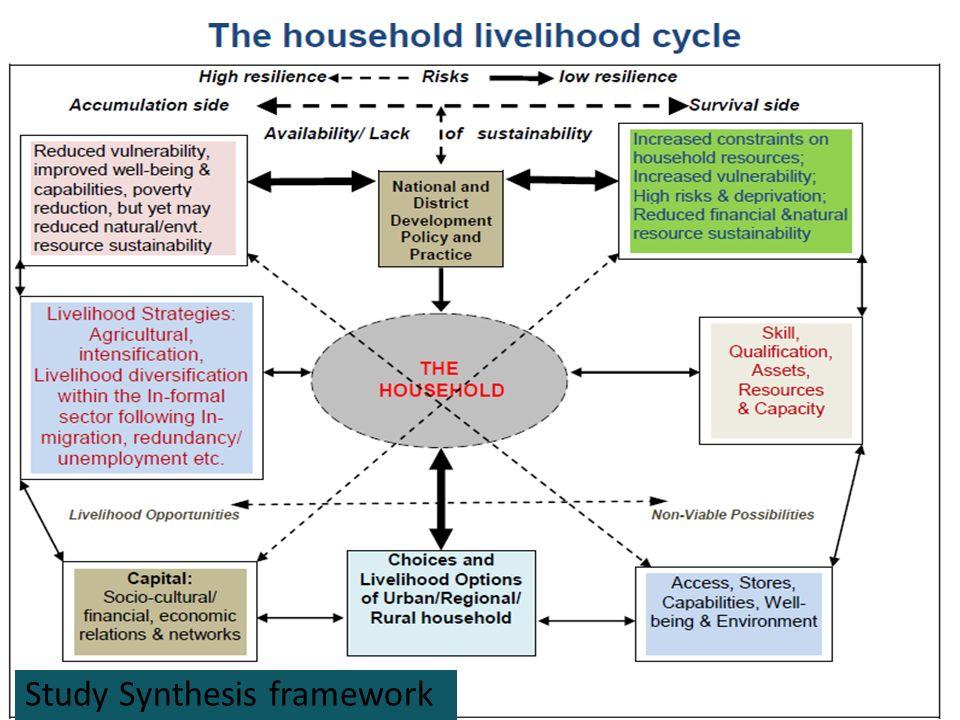 19 Study Synthesis framework
