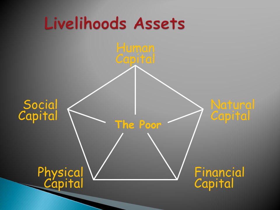 Financial Capital Natural Capital Social Capital Physical Capital Human Capital The Poor